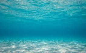 biển 1