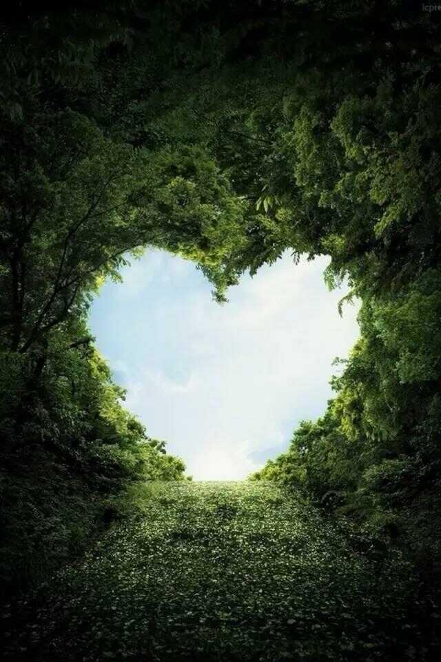 Lắng nghe trái  tim để biết mình muốn gì thích gì