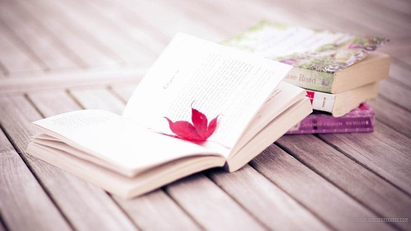định hướng nghề nghiệp cho học sinh THCS nhờ đọc sách
