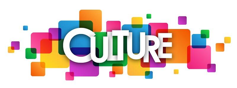 Chọn ngành khối D nhóm ngành văn hóa