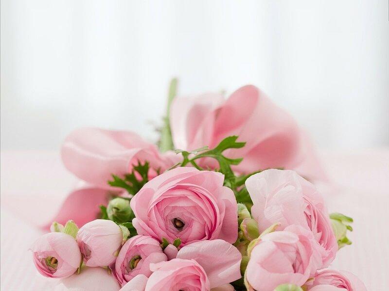 Thu nhập của IB Forex đến từ hoa hồng