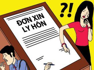 van-phong-cong-ty-tu-van-chuyen-giai-quyet-ly-hon